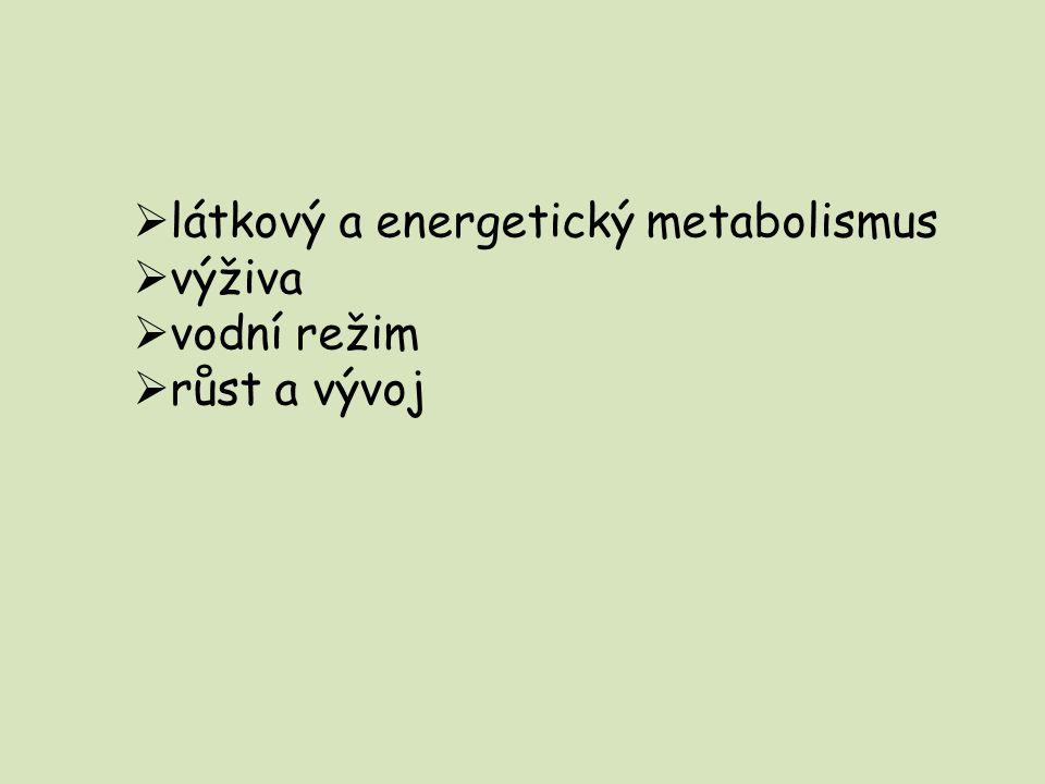  látkový a energetický metabolismus  výživa  vodní režim  růst a vývoj