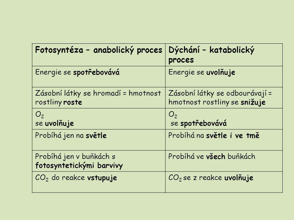 Fotosyntéza – anabolický procesDýchání – katabolický proces Energie se spotřebováváEnergie se uvolňuje Zásobní látky se hromadí = hmotnost rostliny ro