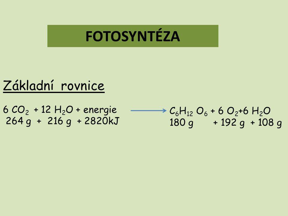 FOTOSYNTÉZA Základní rovnice 6 CO 2 + 12 H 2 O + energie 264 g + 216 g + 2820kJ C 6 H 12 O 6 + 6 O 2 +6 H 2 O 180 g + 192 g + 108 g