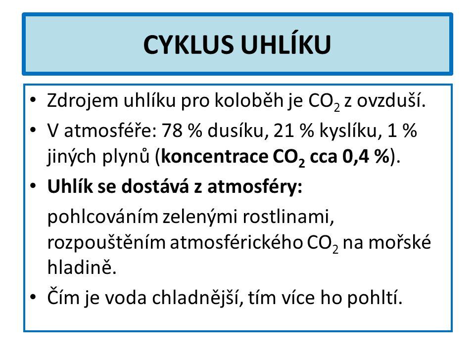 CYKLUS UHLÍKU Zdrojem uhlíku pro koloběh je CO 2 z ovzduší.