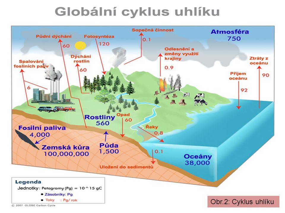 Obr.2: Cyklus uhlíku