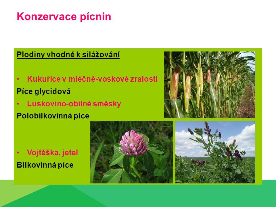 Konzervace pícnin Plodiny vhodné k silážování Kukuřice v mléčně-voskové zralosti Píce glycidová Luskovino-obilné směsky Polobílkovinná píce Vojtěška, jetel Bílkovinná píce