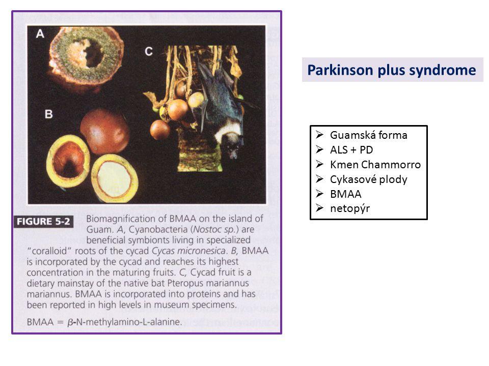 Parkinson plus syndrome  Guamská forma  ALS + PD  Kmen Chammorro  Cykasové plody  BMAA  netopýr