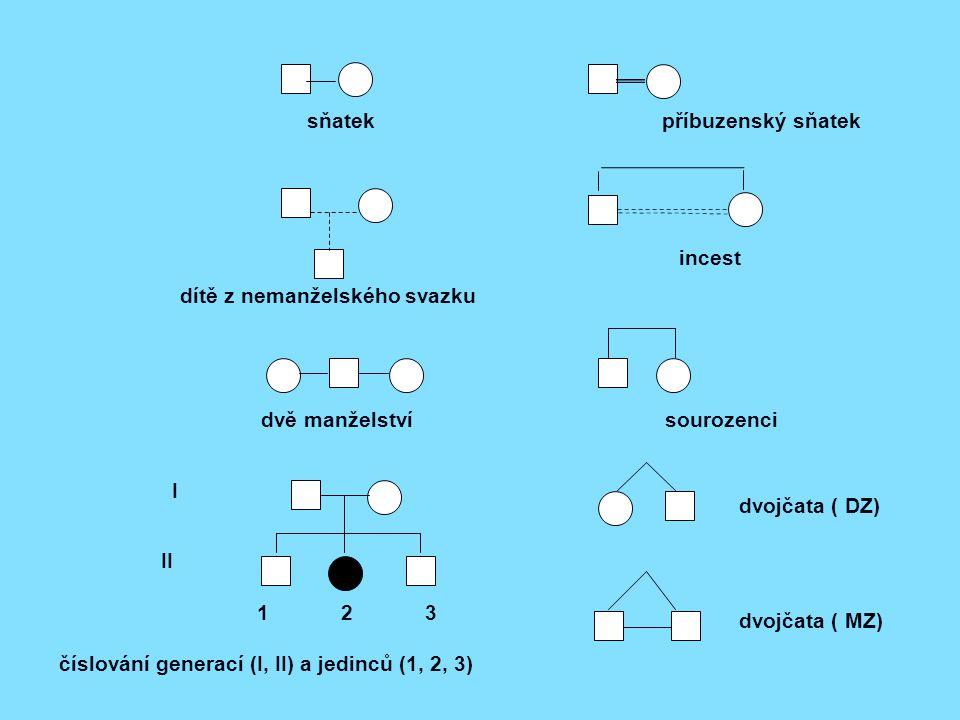 dítě z nemanželského svazku dvě manželství sourozenci dvojčata ( DZ) I II 1 2 3 číslování generací (I, II) a jedinců (1, 2, 3) dvojčata ( MZ) incest sňatek příbuzenský sňatek