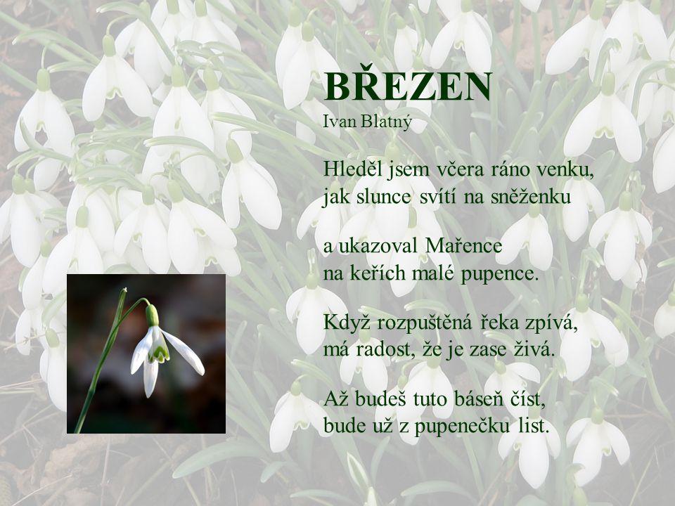 """BŘEZEN Jan Susa I když je nám ještě zima, sluníčko už připomíná: """"Vstávej, země! Už je čas! Brzy bude jaro zas."""" Sněženkový bílý kvítek, díky tomu slu"""