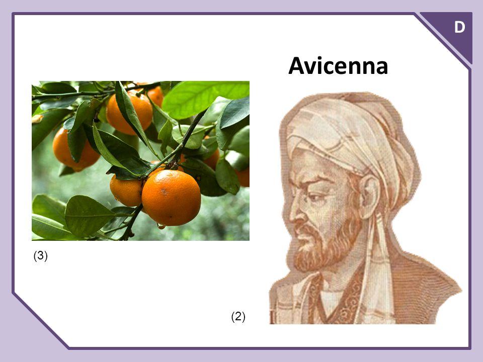 D Avicenna (3) (2)