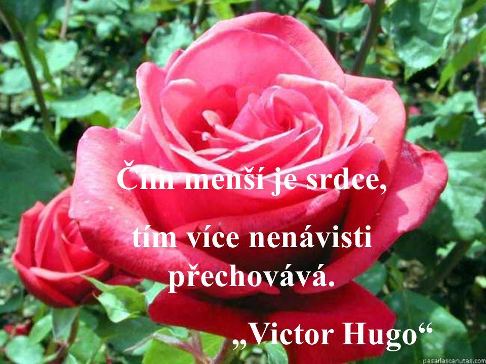 """Čím menší je srdce, tím více nenávisti přechovává. """"Victor Hugo"""