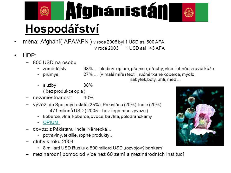 Hospodářství měna: Afghání( AFA/AFN ) v roce 2005 byl 1 USD asi 500 AFA v roce 2003 1 USD asi 43 AFA HDP: –800 USD na osobu zemědělství 38% … plodiny: