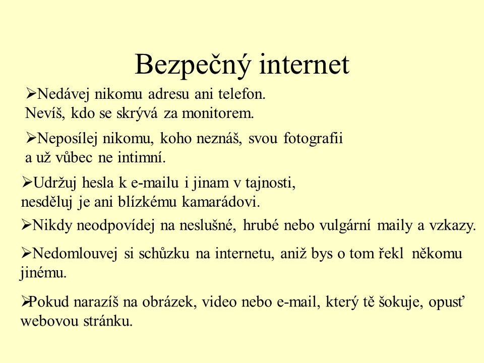 Bezpečný internet  Nedávej nikomu adresu ani telefon.