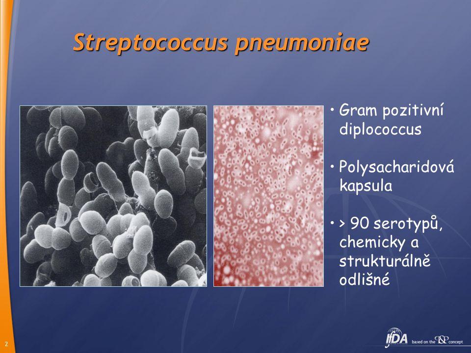 2 Streptococcus pneumoniae Gram pozitivní diplococcus Polysacharidová kapsula > 90 serotypů, chemicky a strukturálně odlišné
