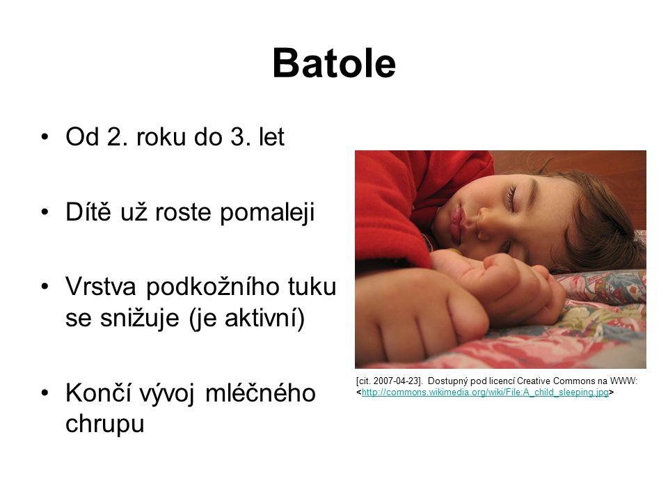 Batole Od 2. roku do 3. let Dítě už roste pomaleji Vrstva podkožního tuku se snižuje (je aktivní) Končí vývoj mléčného chrupu [cit. 2007-04-23]. Dostu