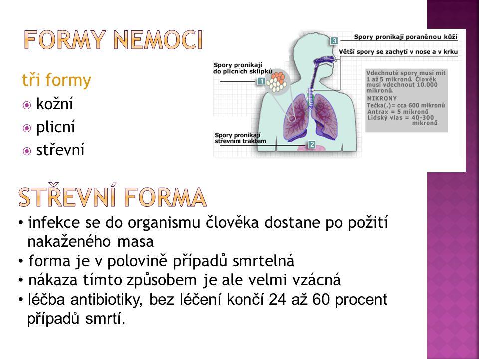 tři formy  kožní  plicní  střevní