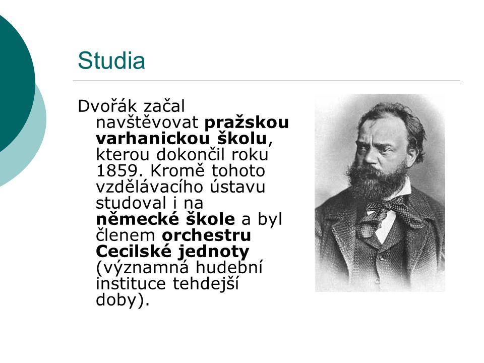 Studia Dvořák začal navštěvovat pražskou varhanickou školu, kterou dokončil roku 1859. Kromě tohoto vzdělávacího ústavu studoval i na německé škole a