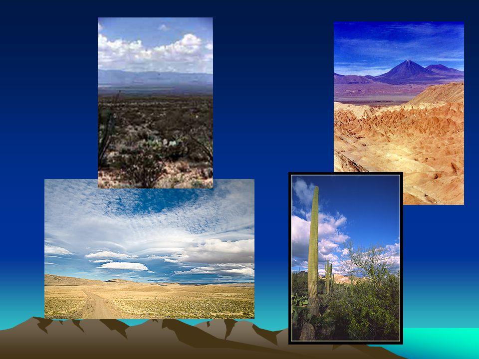 Typy pouští podle půdního základu Hamady (balvanitá, kamenitá poušť) Seriry (štěrkovitá poušť) Ergy, kumy (písčitá poušť) Oblázkové a solné - salary = zasolené horské kotliny a pánve v jihoamerických Andách - šotty = slaná vysychající jezera - sebky = slané centrální pouště v Sahaře