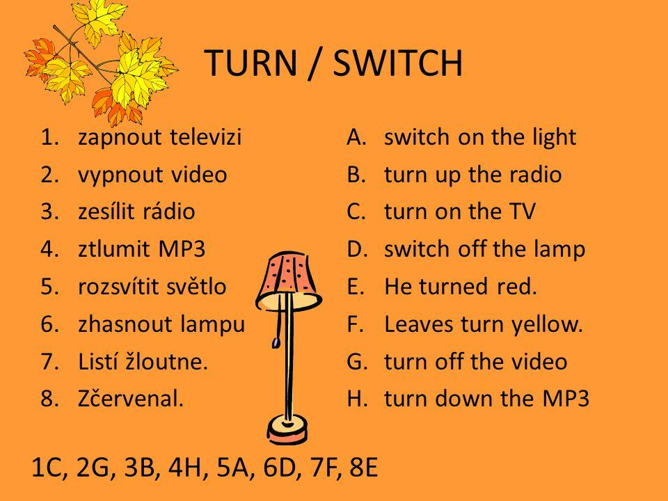 TURN / SWITCH 1.zapnout televizi 2.vypnout video 3.zesílit rádio 4.ztlumit MP3 5.rozsvítit světlo 6.zhasnout lampu 7.Listí žloutne.
