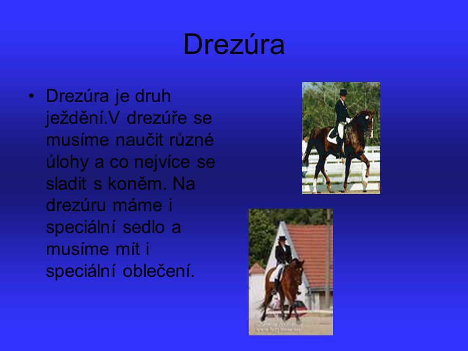 Drezúra Drezúra je druh ježdění.V drezúře se musíme naučit různé úlohy a co nejvíce se sladit s koněm. Na drezúru máme i speciální sedlo a musíme mít