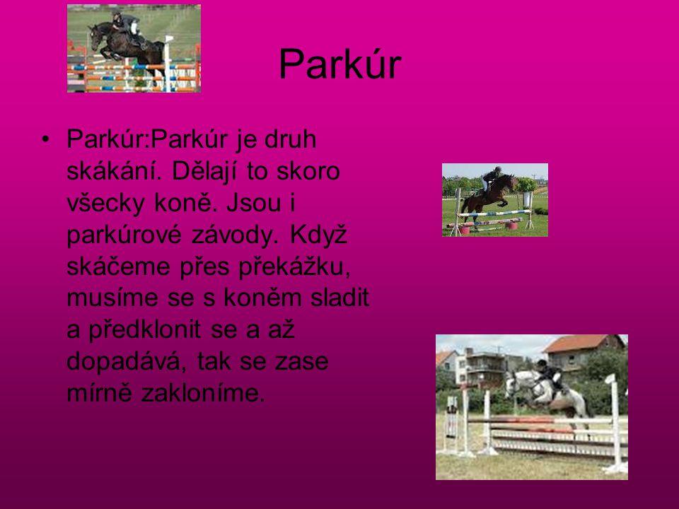 Parkúr Parkúr:Parkúr je druh skákání. Dělají to skoro všecky koně. Jsou i parkúrové závody. Když skáčeme přes překážku, musíme se s koněm sladit a pře