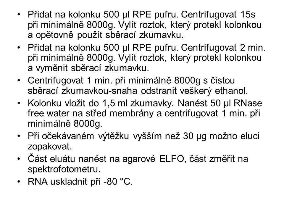 Přidat na kolonku 500 μl RPE pufru. Centrifugovat 15s při minimálně 8000g. Vylít roztok, který protekl kolonkou a opětovně použít sběrací zkumavku. Př