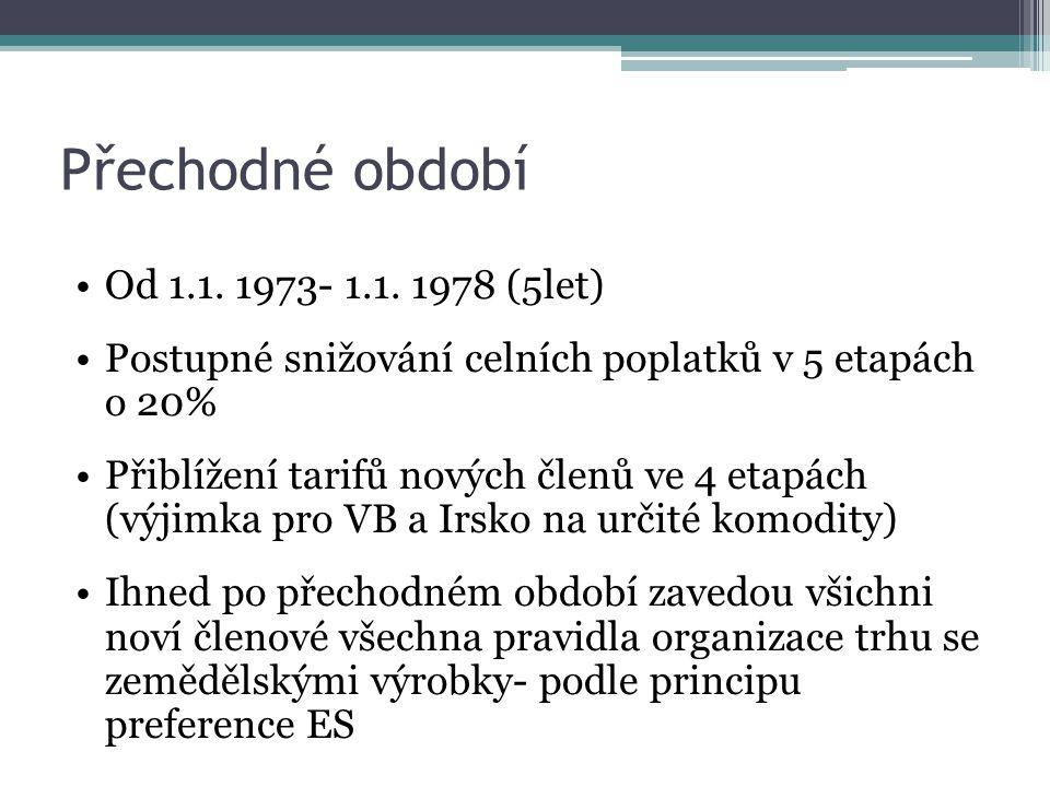 Přechodné období Od 1.1. 1973- 1.1.