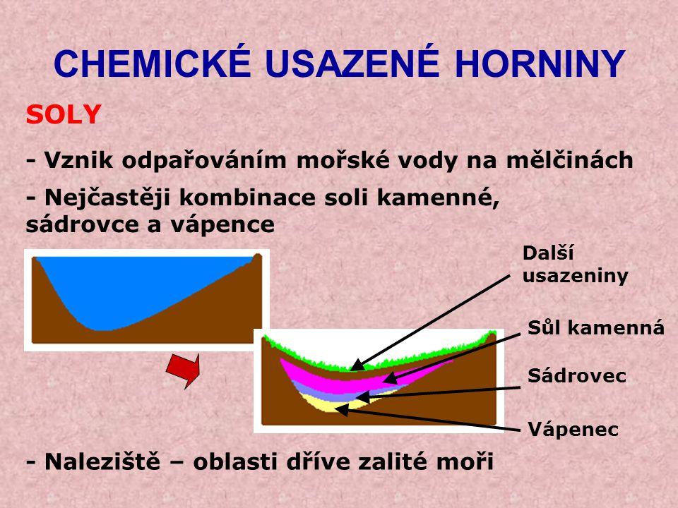 CHEMICKÉ USAZENÉ HORNINY SOLY - Vznik odpařováním mořské vody na mělčinách - Naleziště – oblasti dříve zalité moři - Nejčastěji kombinace soli kamenné
