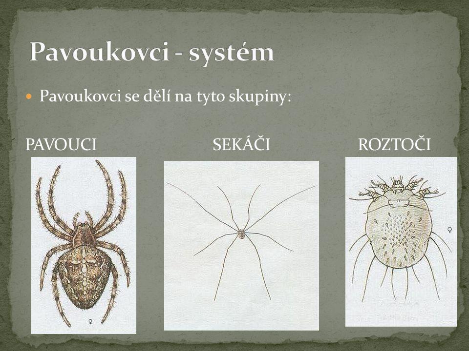 Pavoukovci se dělí na tyto skupiny: PAVOUCISEKÁČI ROZTOČI