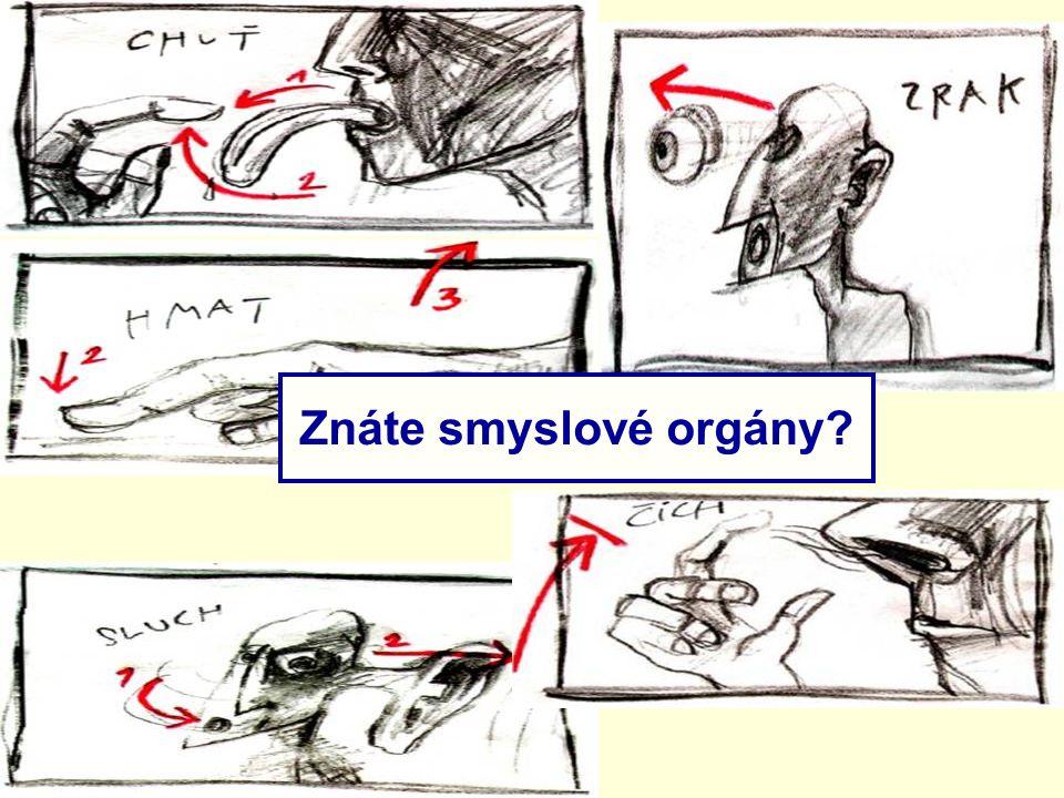 Znáte smyslové orgány?