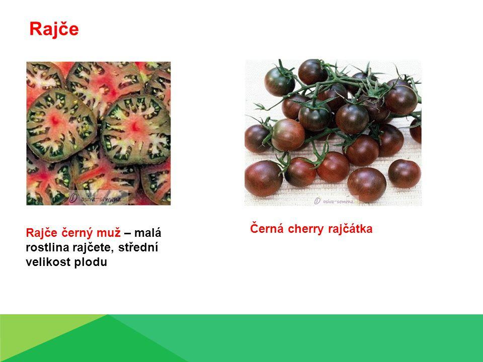 Černá cherry rajčátka Rajče černý muž – malá rostlina rajčete, střední velikost plodu