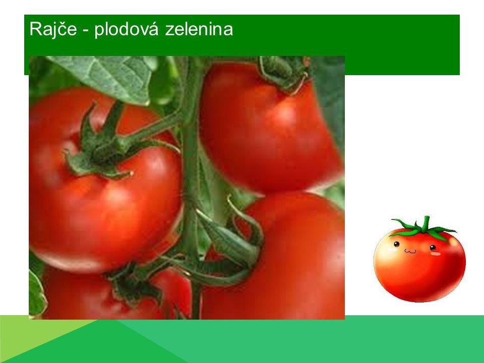 Pěstování rajčat Ochrana rostlin  Houbové a plísňové choroby  Plíseň bramborová  na listech a plodech  Napadení celé rostliny  Vlhké počasí, nestálé teploty  Postřik jako prevence-červen  Například: Acrobat MZ, Ditahem DM  DODRŽENÍ OCHRANNÉ LHŮTY