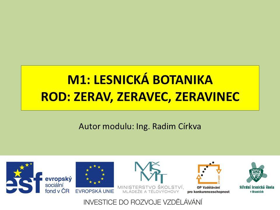 M1: LESNICKÁ BOTANIKA ROD: ZERAV, ZERAVEC, ZERAVINEC Autor modulu: Ing. Radim Církva