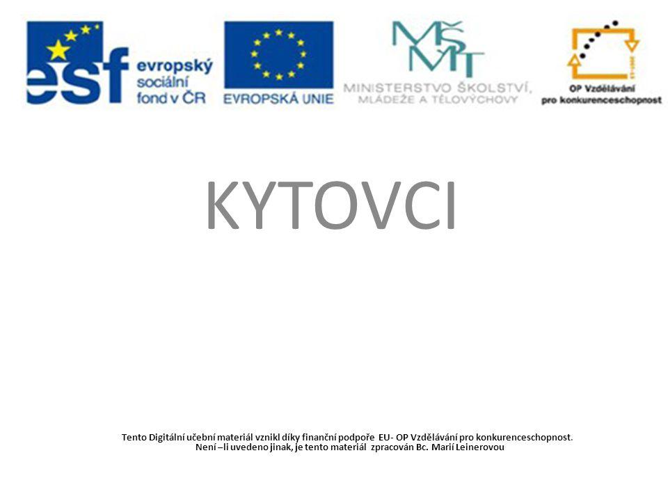 KYTOVCI Tento Digitální učební materiál vznikl díky finanční podpoře EU- OP Vzdělávání pro konkurenceschopnost. Není –li uvedeno jinak, je tento mater