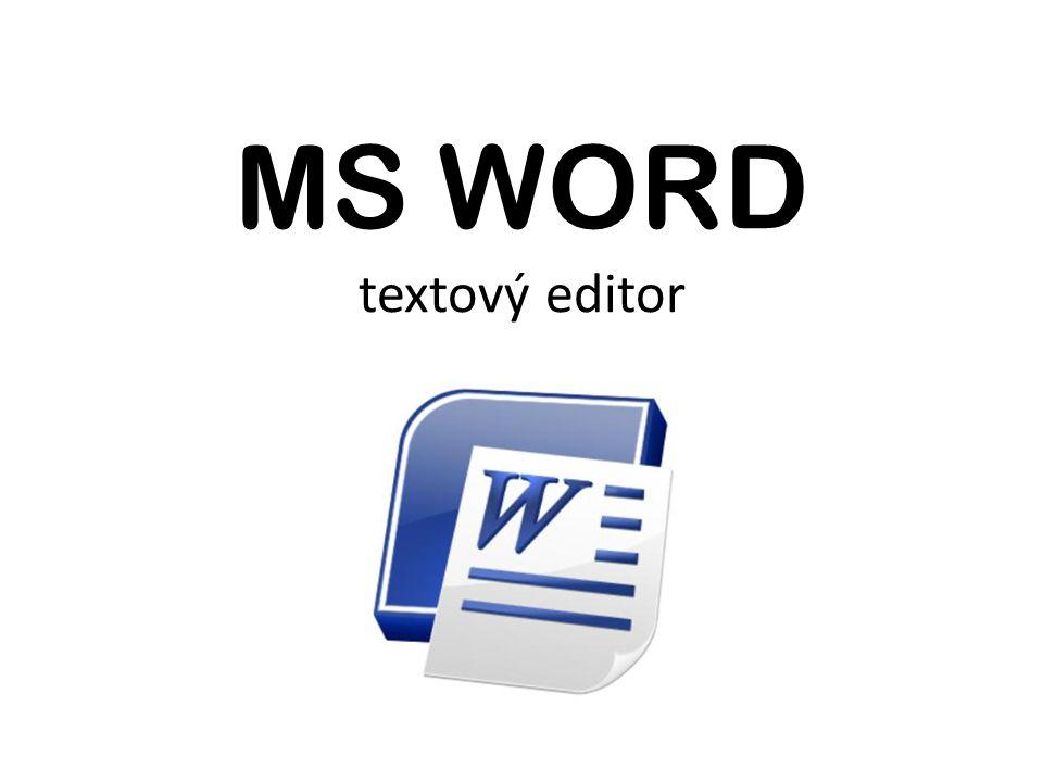MS WORD textový editor