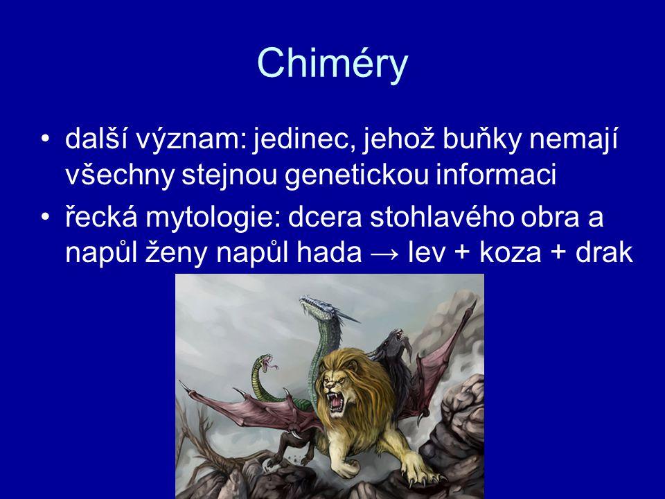 Chiméry další význam: jedinec, jehož buňky nemají všechny stejnou genetickou informaci řecká mytologie: dcera stohlavého obra a napůl ženy napůl hada → lev + koza + drak