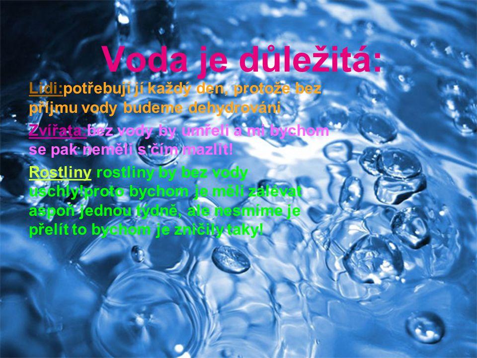 Voda je důležitá: Lidi:potřebují jí každý den, protože bez příjmu vody budeme dehydrováni Zvířata:bez vody by umřeli a mi bychom se pak neměli s čím mazlit.