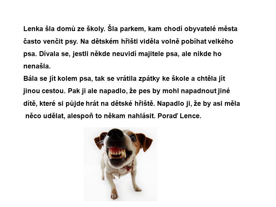 Správné řešení: Lenka by měla zavolat na městskou policii, že v parku pobíhá neznámý velký pes.
