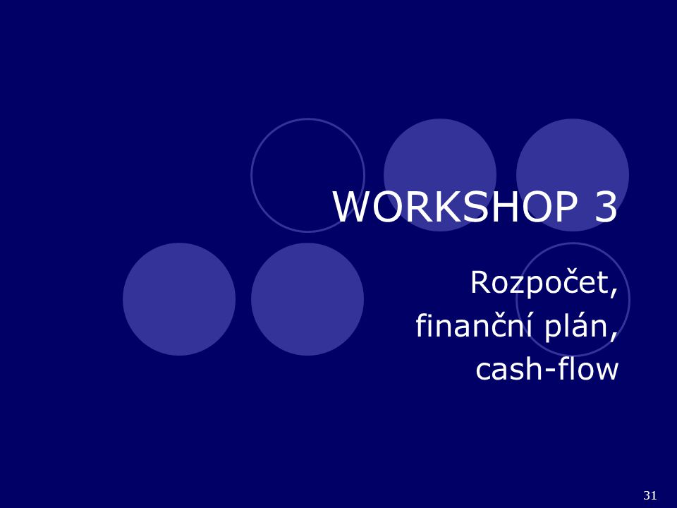 31 WORKSHOP 3 Rozpočet, finanční plán, cash-flow