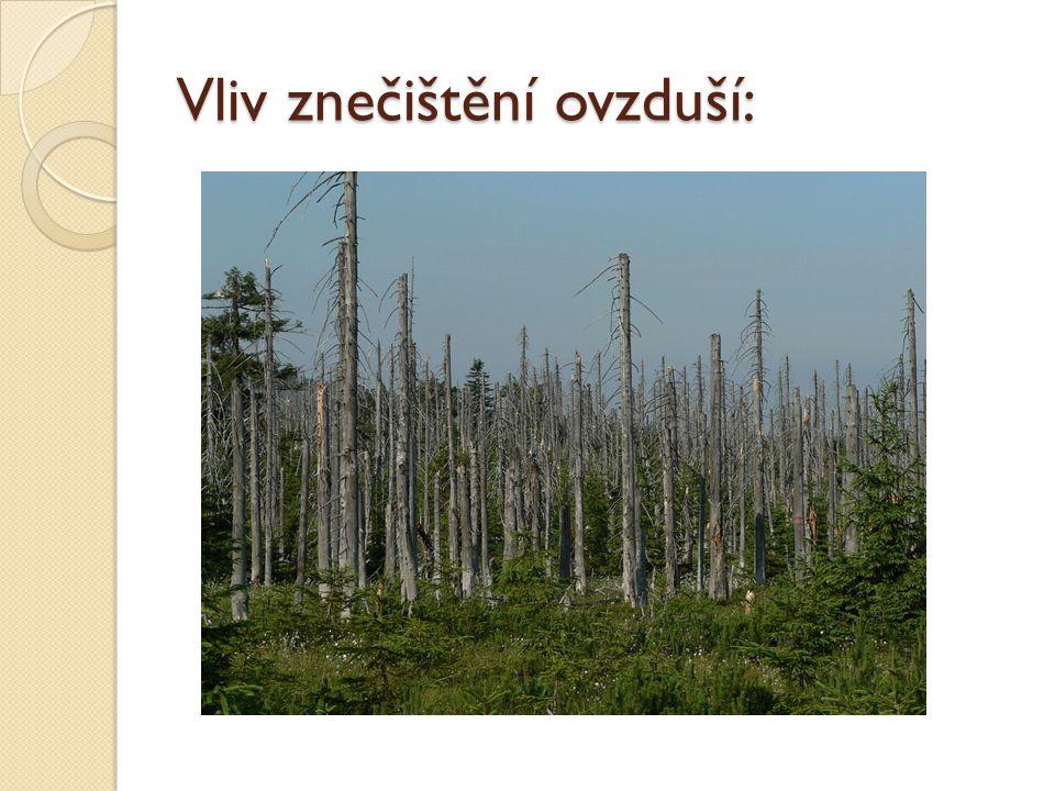 Vliv znečištění ovzduší: