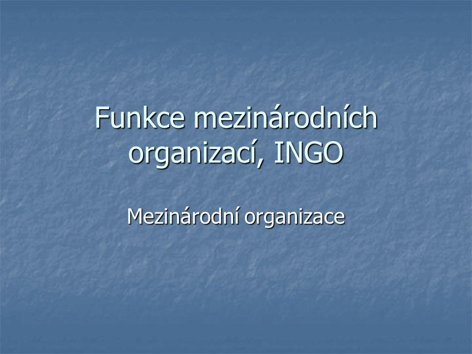 Funkce mezinárodních organizací, INGO Mezinárodní organizace