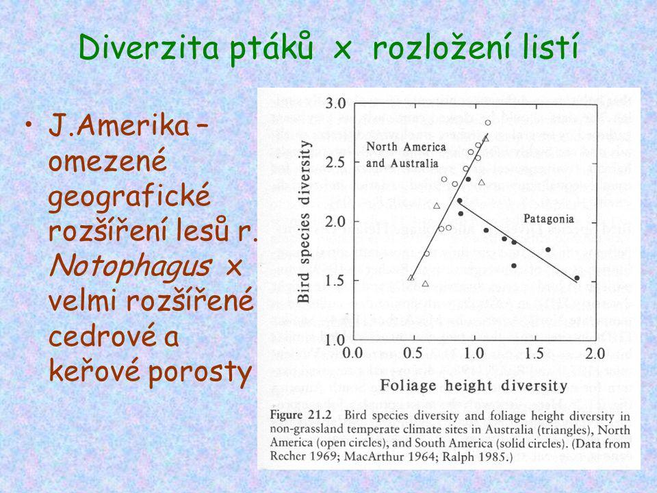 Diverzita ptáků x rozložení listí J.Amerika – omezené geografické rozšíření lesů r. Notophagus x velmi rozšířené cedrové a keřové porosty