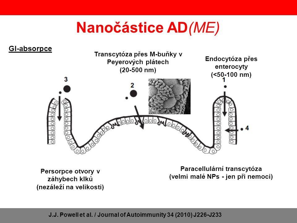 Genotoxické účinky NPs Singh N.
