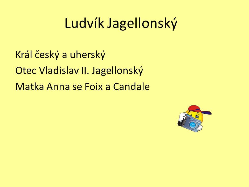 Nástup k moci Po smrti Vladislava bylo Ludvíkovi pouze 10 let.