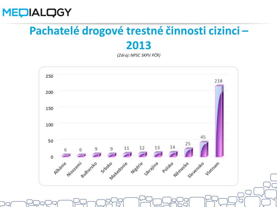 Pachatelé drogové trestné činnosti cizinci – 2013 (Zdroj: NPSC SKPV PČR)