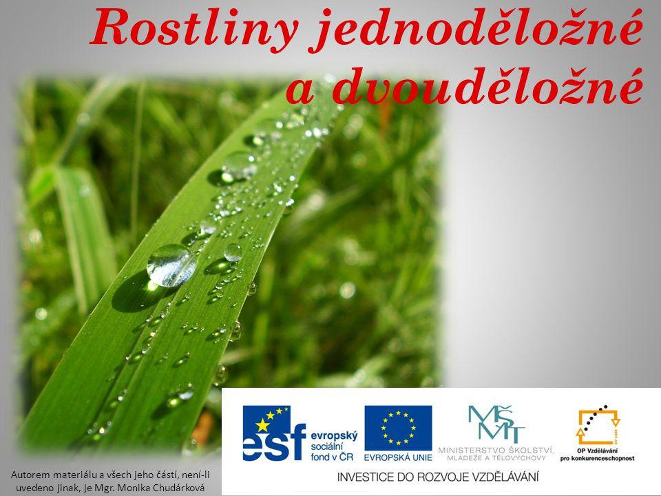 Rostliny jednoděložné a dvouděložné Autorem materiálu a všech jeho částí, není-li uvedeno jinak, je Mgr. Monika Chudárková