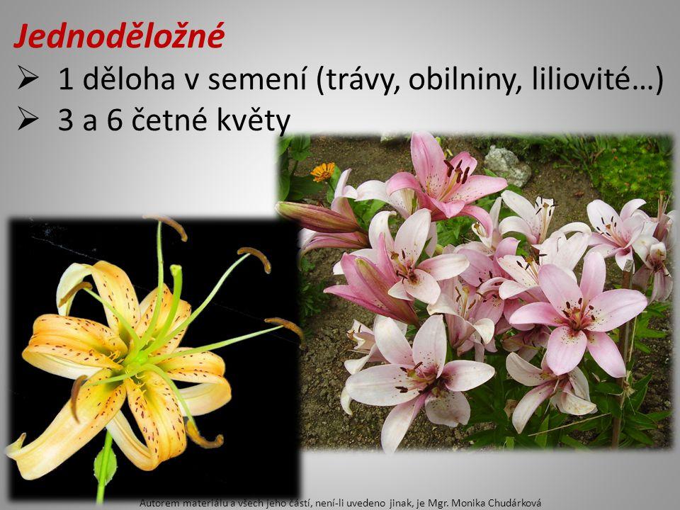 Jednoděložné  1 děloha v semení (trávy, obilniny, liliovité…)  3 a 6 četné květy Autorem materiálu a všech jeho částí, není-li uvedeno jinak, je Mgr