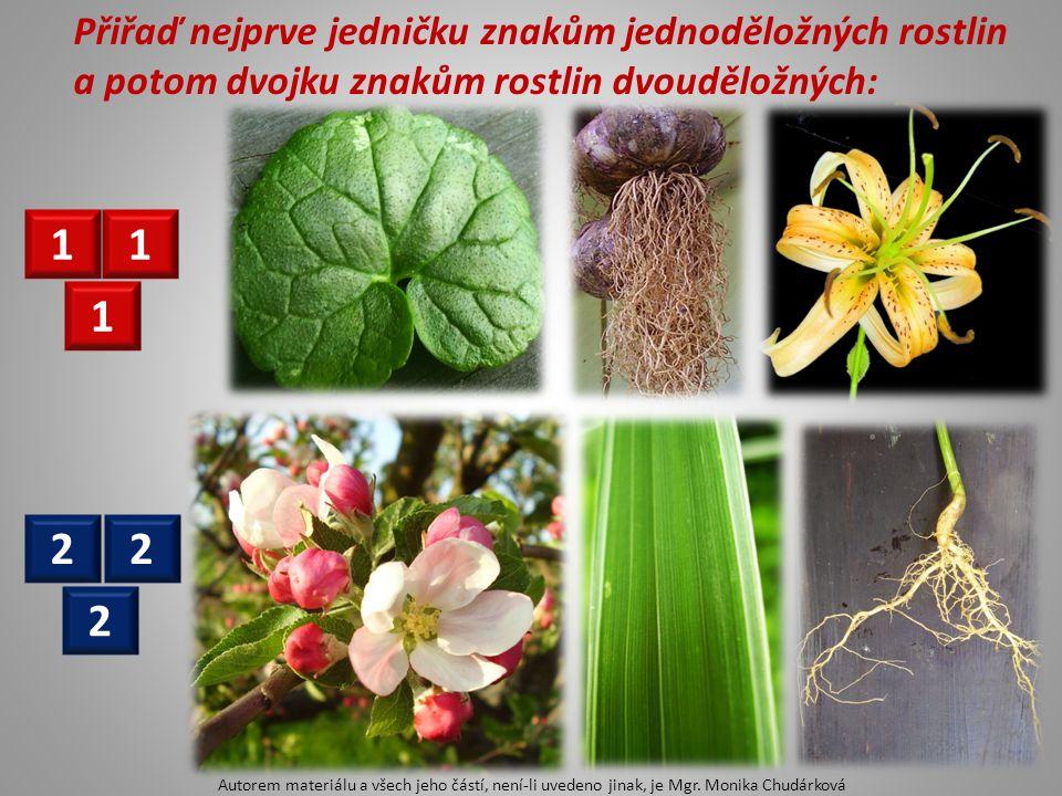 Přiřaď nejprve jedničku znakům jednoděložných rostlin a potom dvojku znakům rostlin dvouděložných: 1 1 1 22 2 Autorem materiálu a všech jeho částí, ne