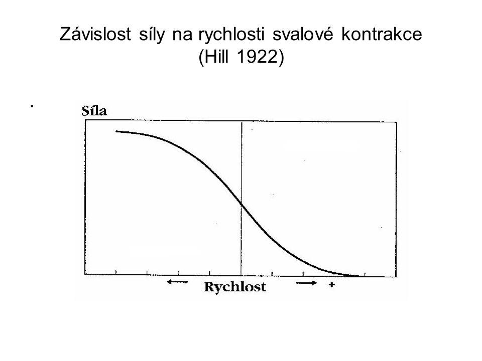 Závislost síly na rychlosti svalové kontrakce (Hill 1922).