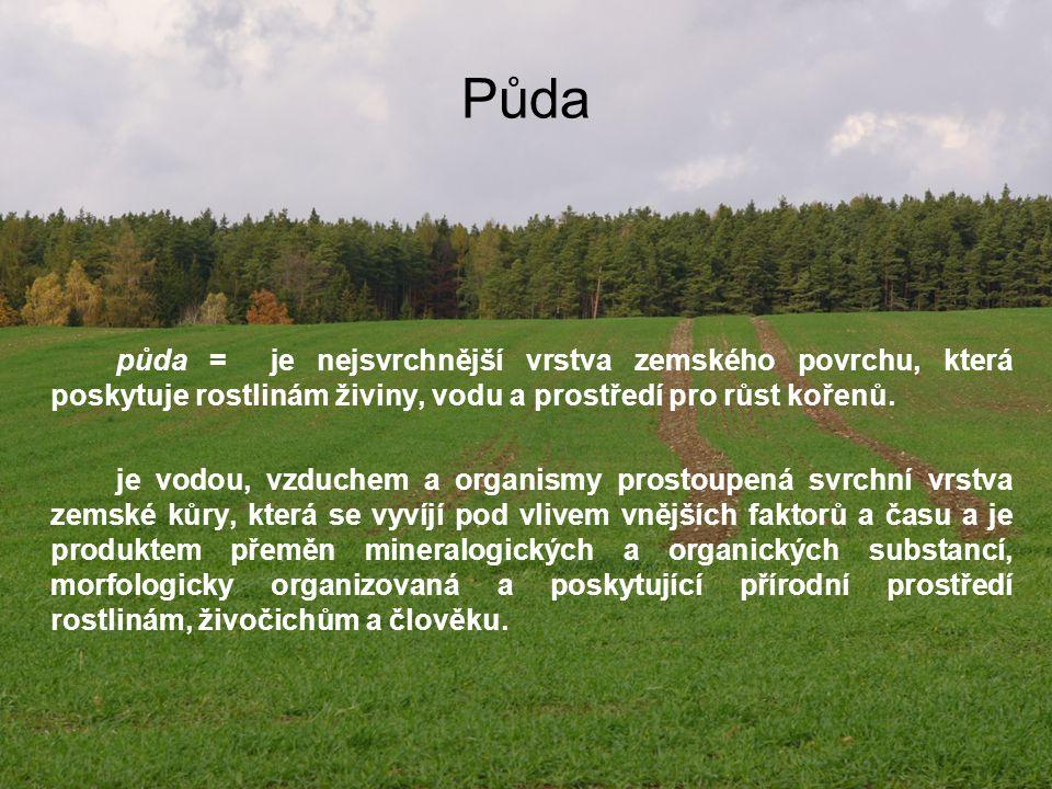 Půda půda = je nejsvrchnější vrstva zemského povrchu, která poskytuje rostlinám živiny, vodu a prostředí pro růst kořenů. je vodou, vzduchem a organis