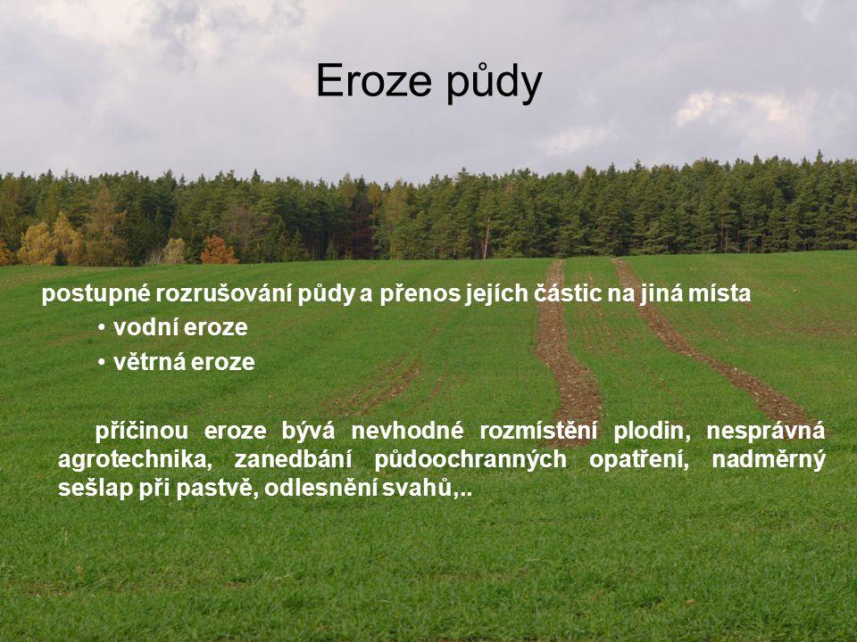 Eroze půdy postupné rozrušování půdy a přenos jejích částic na jiná místa vodní eroze větrná eroze příčinou eroze bývá nevhodné rozmístění plodin, nes