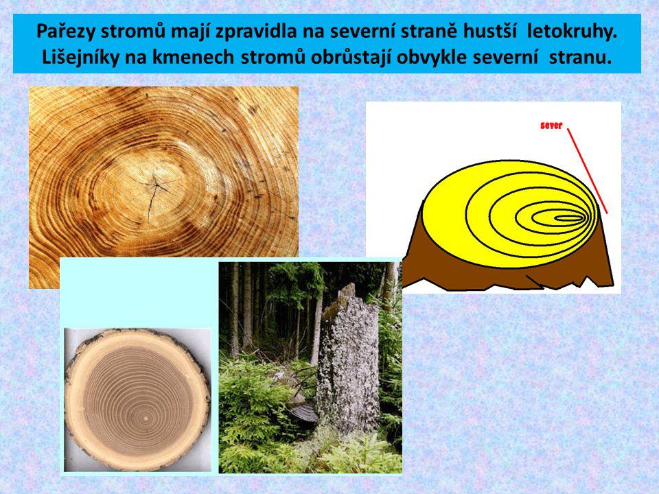 Pařezy stromů mají zpravidla na severní straně hustší letokruhy. Lišejníky na kmenech stromů obrůstají obvykle severní stranu.