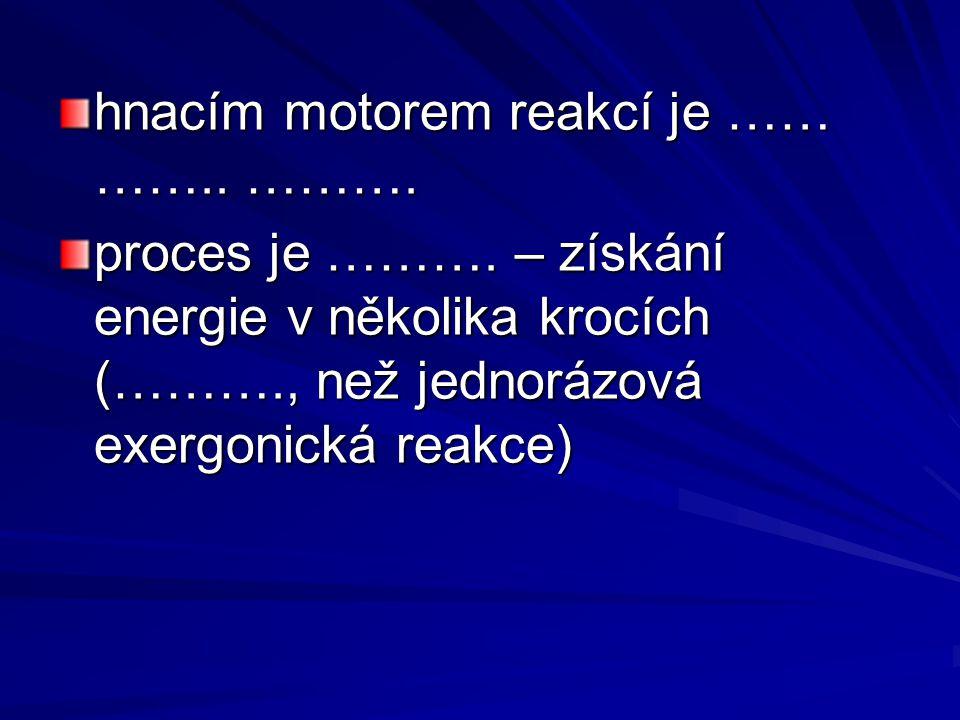 hnacím motorem reakcí je …… …….. ………. proces je ……….