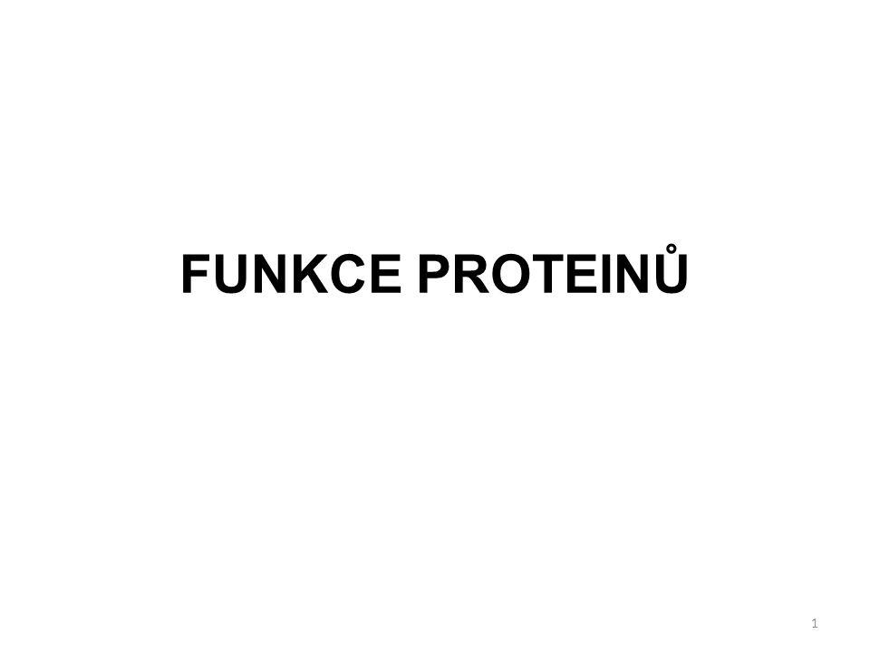 Tvar molekuly proteinu: Globulární proteiny Fibrilární proteiny Proteinová doména[FIG.] Disulfidové můstky[FIG.] Chaperony[FIG.] Funkce proteinu vyplývá z jeho struktury.